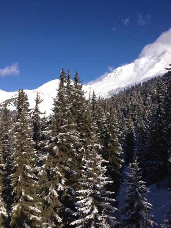 Paisaje en los Alpes suizos